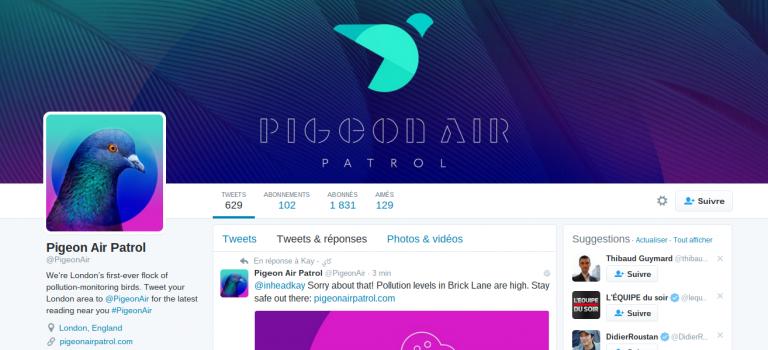 Big data et robot Twitter : les pigeons ont de la ressource